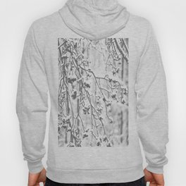 Cloudy Day In The Forest B&W Snowy Rowan Branches With Berries #decor #society6 #homedecor Hoody