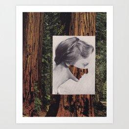 royal pine Art Print