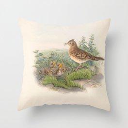 015 Sky Lark or Japanese Skylark alauda arvensis4 Throw Pillow