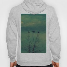 Ravens Come Gathering in a Soft Turquoise Sky Hoody