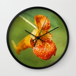 Spotted Touch Me Not Wall Clock
