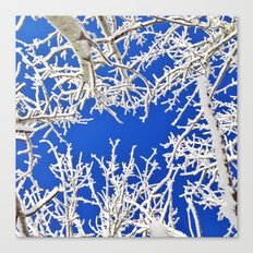 Bright Winter Blues Canvas Print