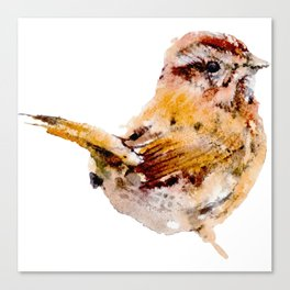 Watercolor Sparrow Painting Canvas Print