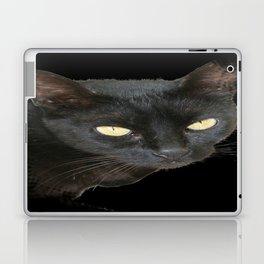 Black Cat Isolated on Black Background Laptop & iPad Skin