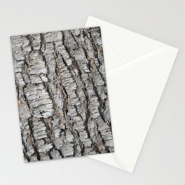 TEXTURES -- Spruce Bark Stationery Cards