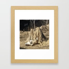 Sleeping Beast Framed Art Print