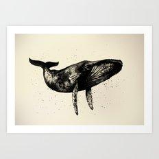 Humpback Whale Ink Art Print