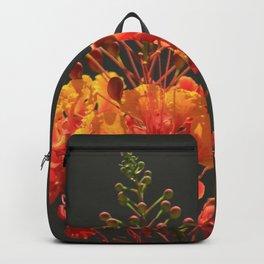 Desert Fall Colors IV Backpack