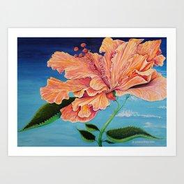 Heavenly Hibiscus Art Print