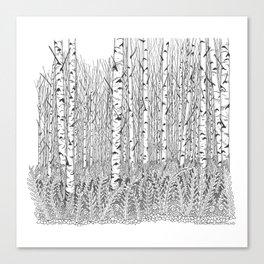 Birch Trees Black and White Illustration Canvas Print