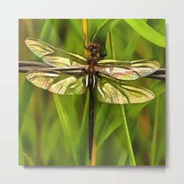 Dragonfly In Brown And Yellow Metal Print