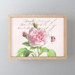 Paris Rose Framed Mini Art Print