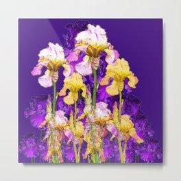 Contemporary Purple Yellow Iris Garden Art Metal Print