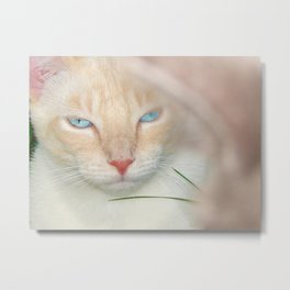 Prince Willy Metal Print