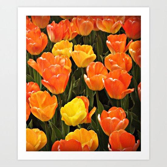 Bright Spring Art Print