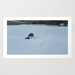 Wallace burry face snow Art Print
