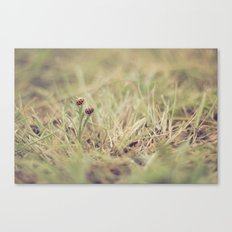 Ladybug Friends Canvas Print