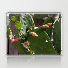 Summer Cactus in Flower Laptop & iPad Skin