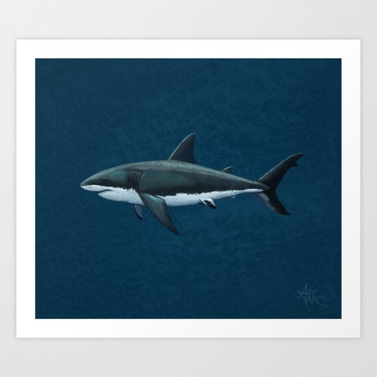 """Carcharodon carcharias"" by Amber Marine  ~ Great White Shark Art, (c) 2015 Art Print"