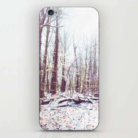 Winter Forest iPhone & iPod Skin