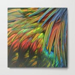 Color in Birdworld Metal Print