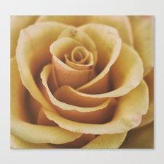 Rose Textures Canvas Print