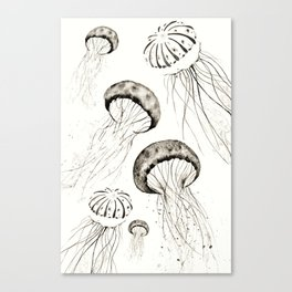 jelly fishes black and white Canvas Print