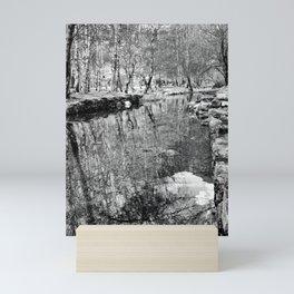 River Reflections - Black & White Mini Art Print