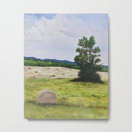 Tree in the Hayfield Metal Print