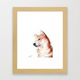 Shiba Inu Framed Art Print