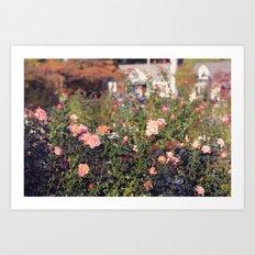Rose Garden on a Sunny Day Art Print