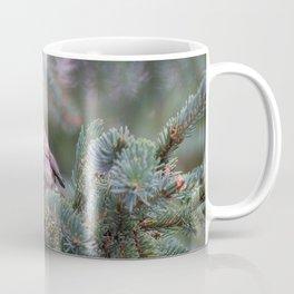 Backyard Visitor ~ I Coffee Mug