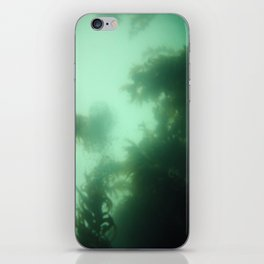 Seaweed Mist iPhone Skin