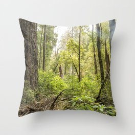 Schrader Old Growth Forest Throw Pillow
