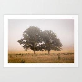 Morning's Mist Art Print