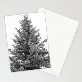 B&W White Spruce Stationery Cards