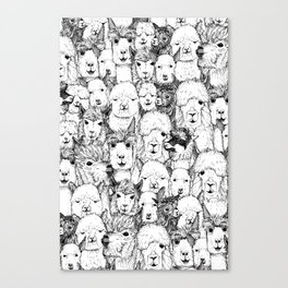 just alpacas black white Canvas Print