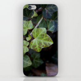 A Bed of Ivy iPhone Skin