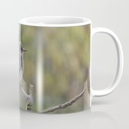 Spotted Flycatcher Coffee Mug