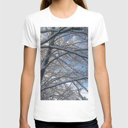 Snow-decorated trees T-shirt