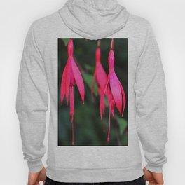 Pink Petals 1 Hoody