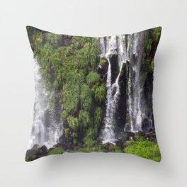 Iguazu Falls, Brazil Throw Pillow