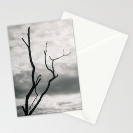 Bare... Stationery Cards