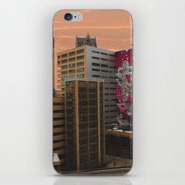 Detroit Sunset iPhone Skin