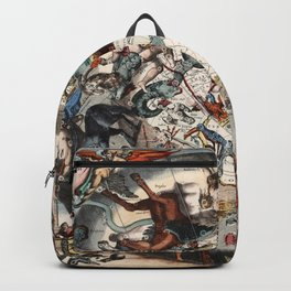 Constellations of the Southern Sky Backpack