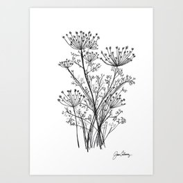 Dill herb original black and white pencil and ink sketch, by Jason Callaway Art Print