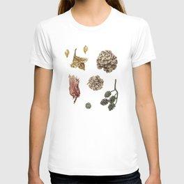 Beech, Larch, Alder, Hazel T-shirt