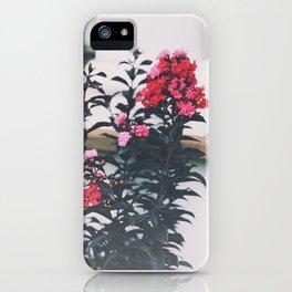 Sunset Magic Crape Myrtle iPhone Case