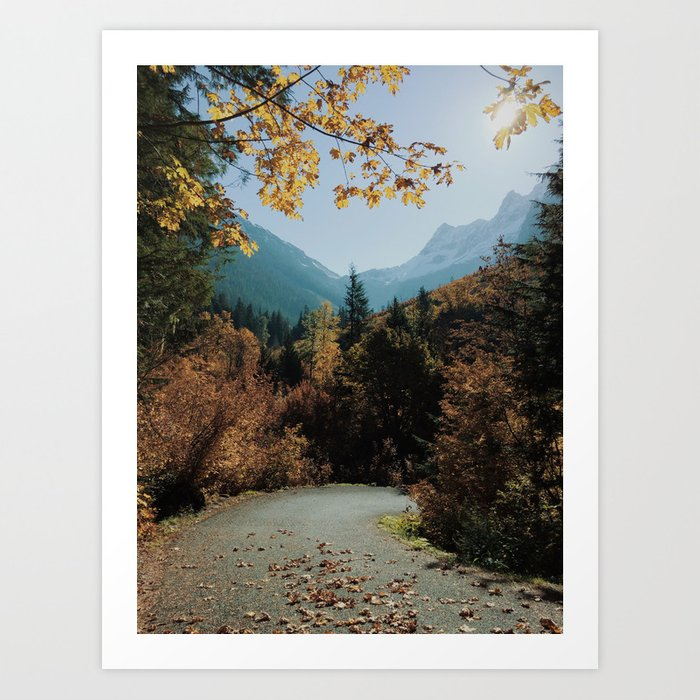 Washington Fall Rd Art Print