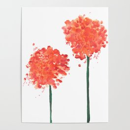 2 abstract geranium flowers Poster